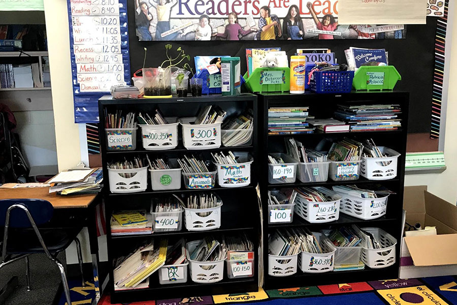 Bookshelf of books organized by reading level