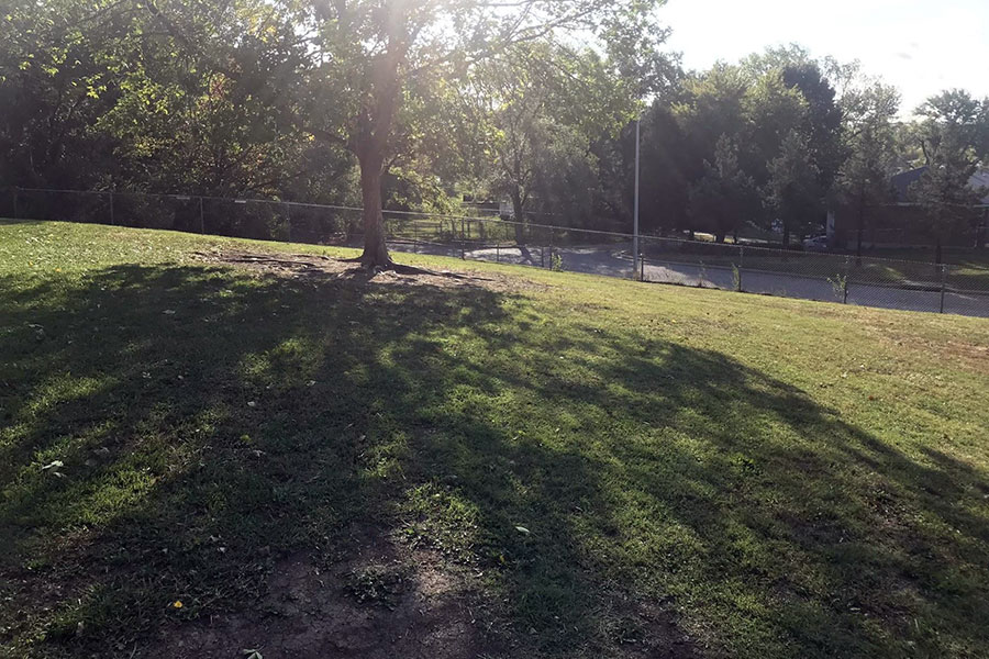 Students also have a large green space to run and play during outdoor recess.